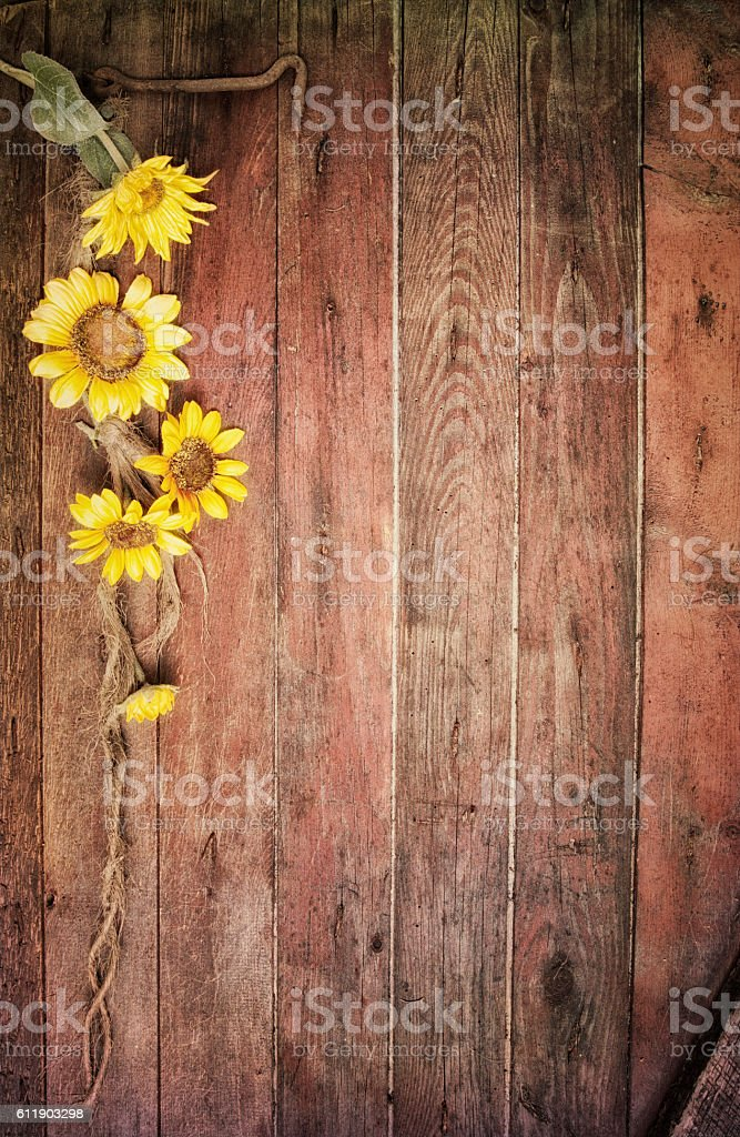 Rustic Sunflowers And An Old Barn Wood Door Background Vertical Royalty Free Stock Photo