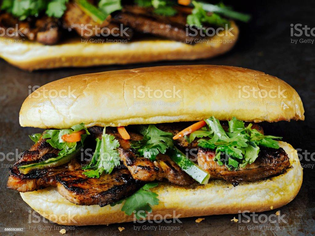 rustic vietnamese bahn mi pork sandwich royalty-free stock photo