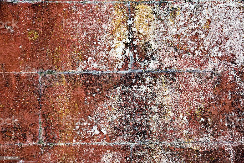 Rustic Wall royalty-free stock photo