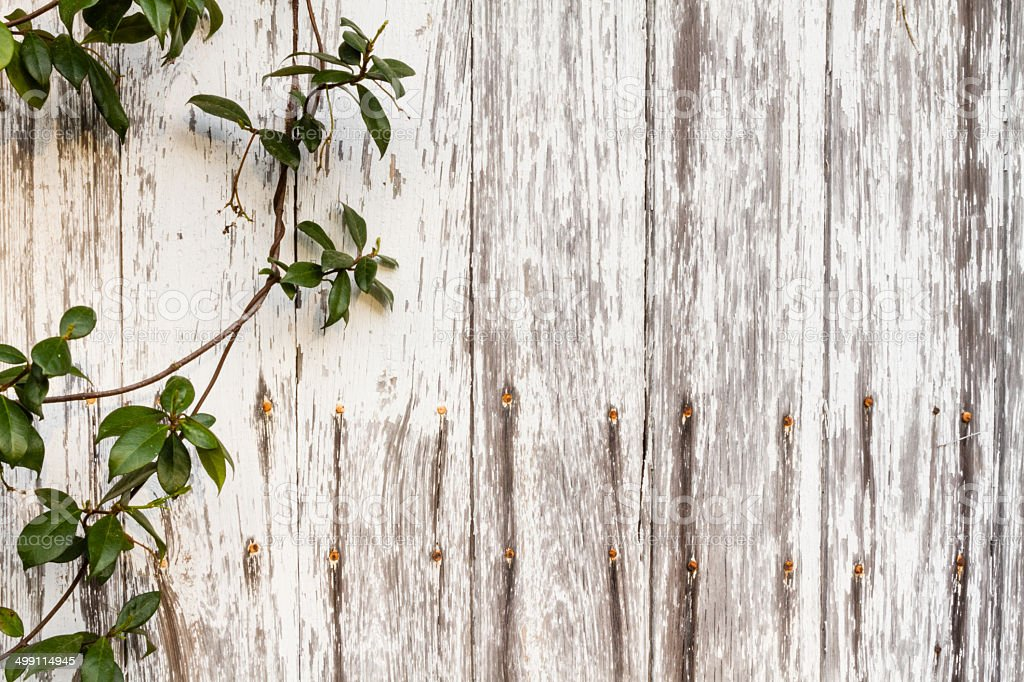 Rustic Wood Fence Background Rustic Wooden Background Of Logs A