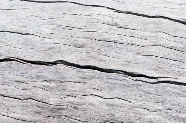 Rustic wood texture stock photo