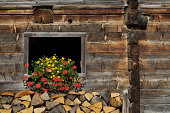 Traditional wooden barn decorated with flowers and stacked firewood in front of it, Dienten am Hochkonig, Salzburg, Austria