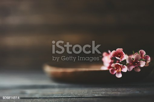 Rustic wooden plate with blossoms