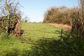 istock Rusting Farmer's gate 172767593