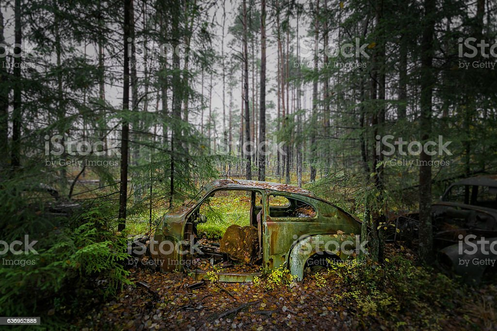 Rusty abandoned car in forest stock photo