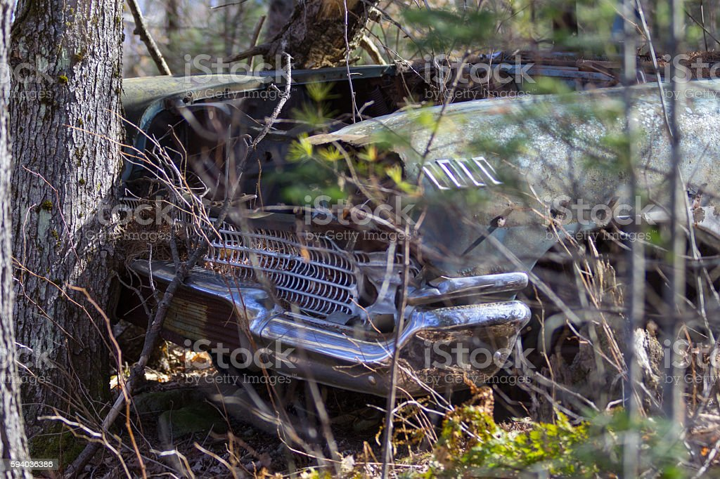 Rusty Abandoned Car In Woods Stock Photo Istock