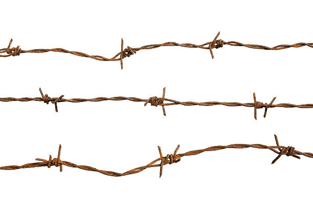 Rusty barb wire isolated on a white background stock photo