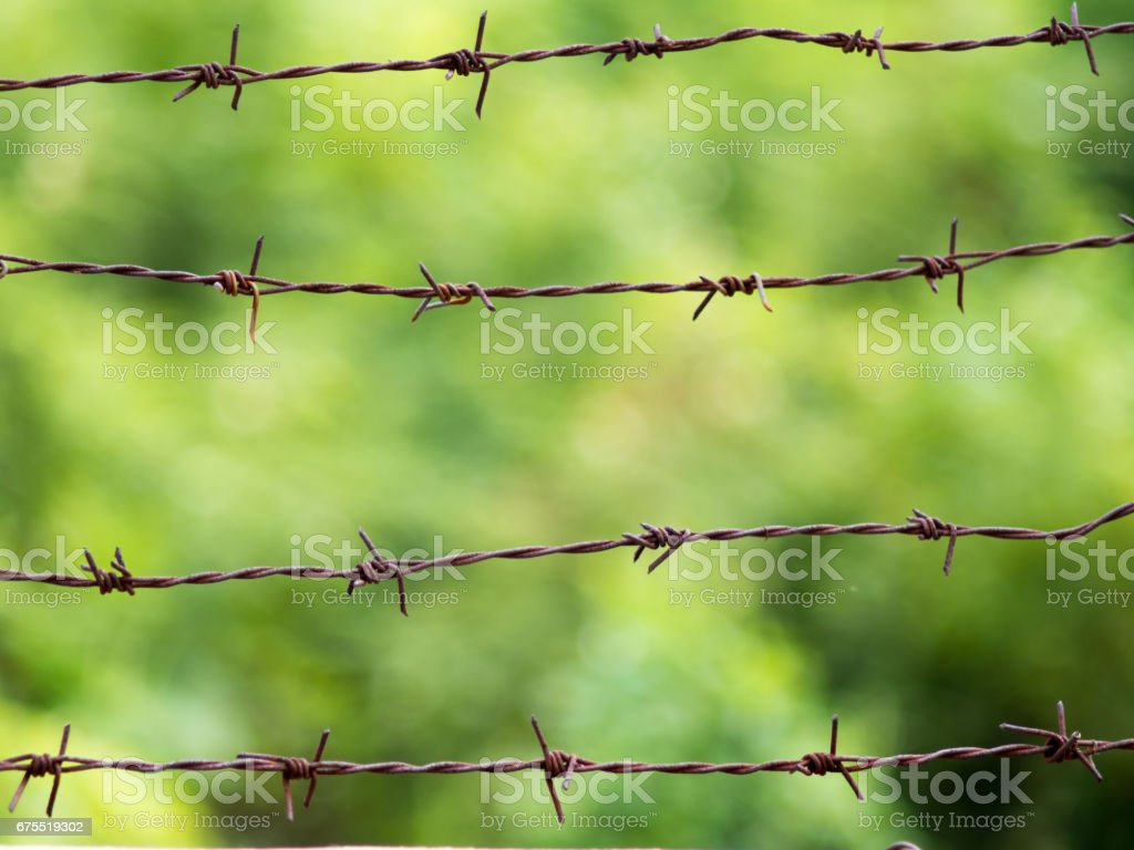 Rusty Barbed Wire On Green BackgroundBlurry Rustic Grunge Aged Rod Fence