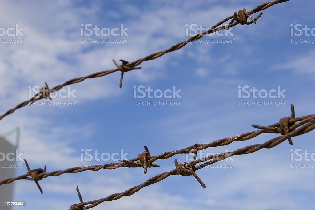 Rusty Barbed Wire royalty-free stock photo