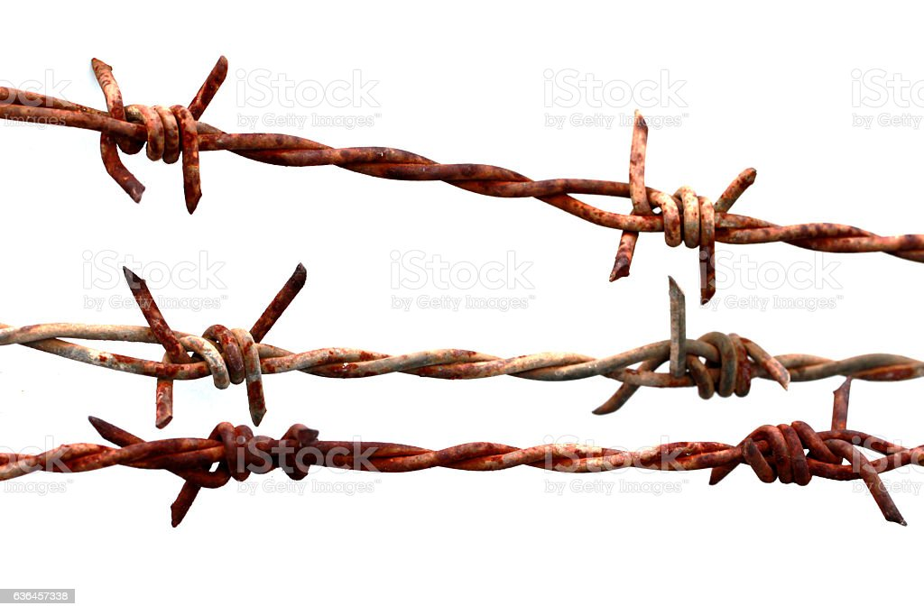 rusty barbed wire with white background stock photo