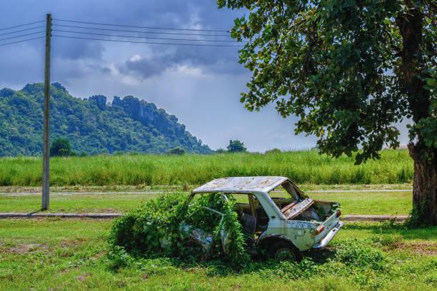 rostiges autowrack, verfallenes altes auto ist bewachsen mit rasen, ein altes schrottauto, die verlassenen bergen unter dem baum wurde verrostet - waldfriedhof stock-fotos und bilder