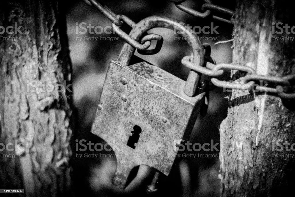 roestige vergrendelen - Royalty-free Beveiliging Stockfoto