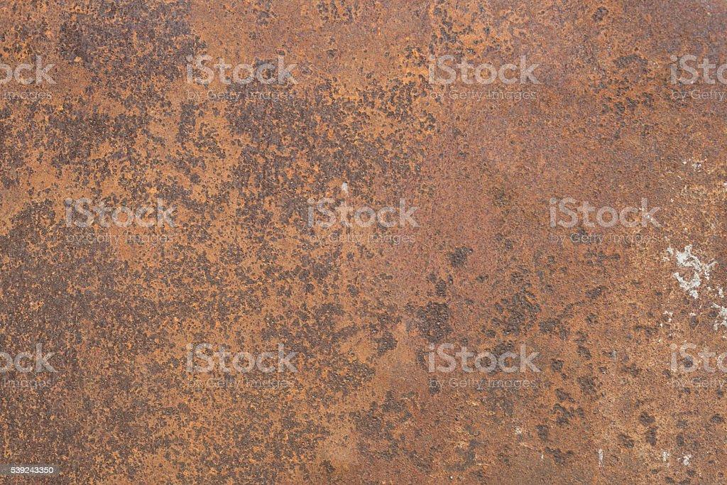 rusty metal leaf for  text or image textured background foto de stock libre de derechos