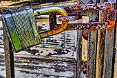 istock Rusty, old, locked padlock on a latch horizontally 521033628