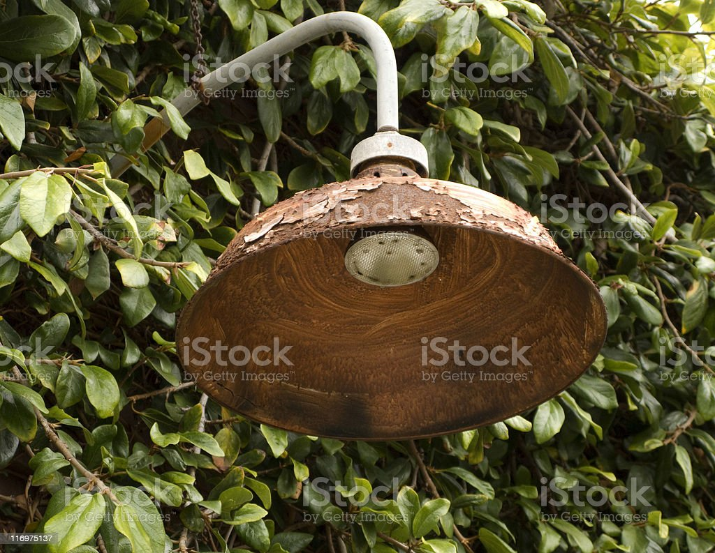 Rusty Outdoor Light, Poor Condition, Obsolete, Overgrown, Electrical-Fixture, Peeling, Grunge royalty-free stock photo