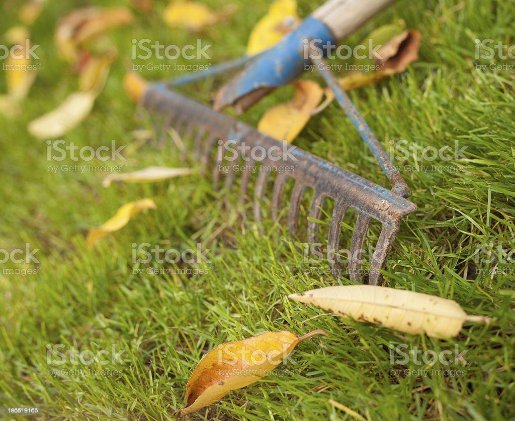 Rusty rake royalty-free stock photo