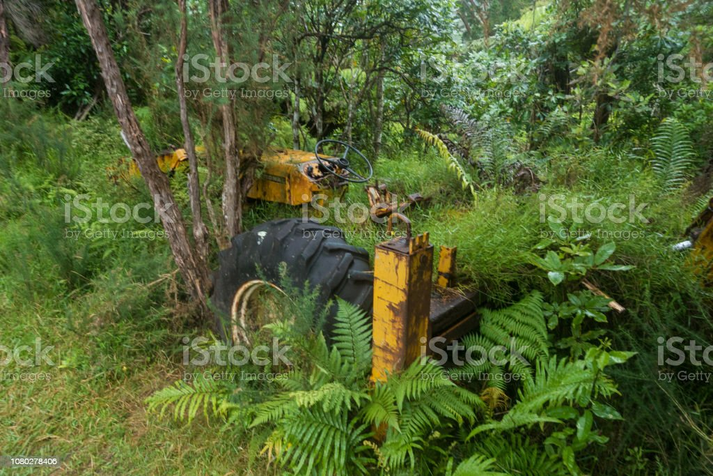 Rusty tractor in the African jungle stock photo