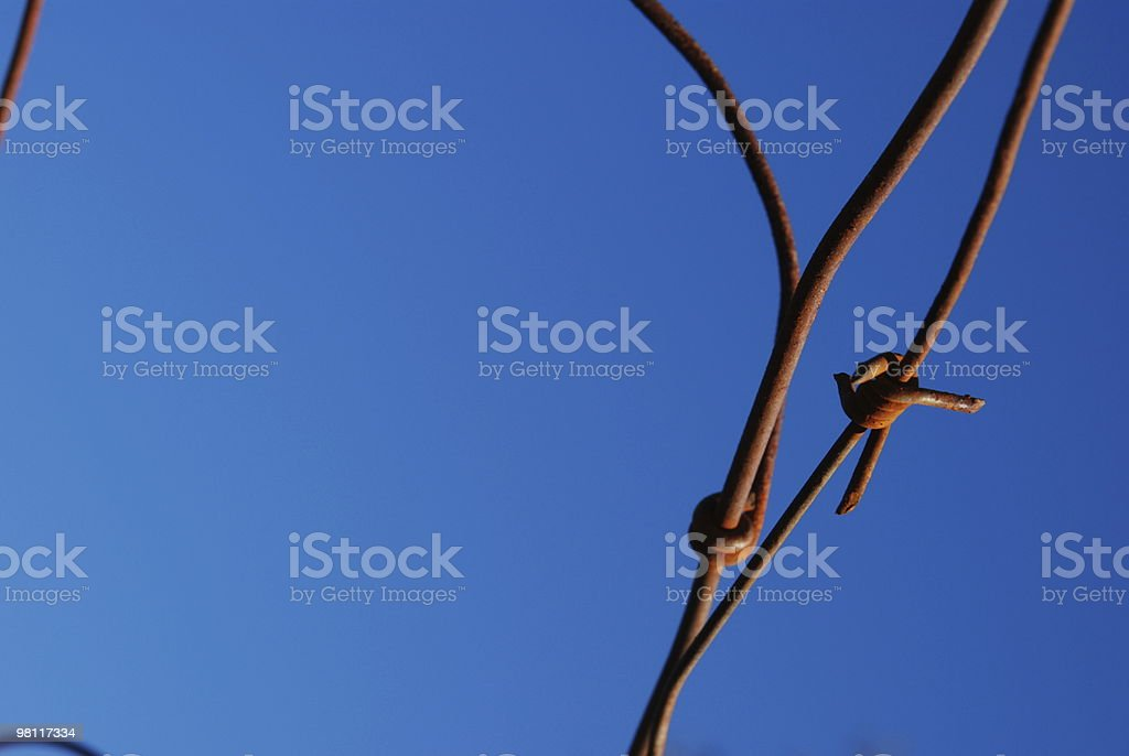 Rusty Wire Fence - Close up royalty-free stock photo