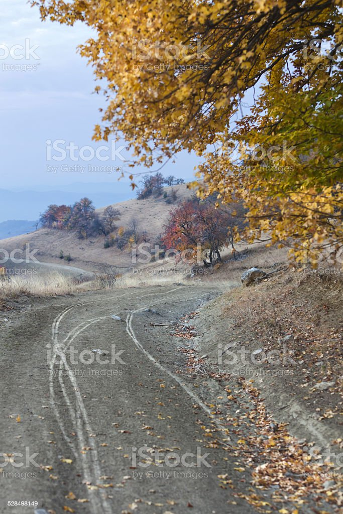 rutted road stock photo more pictures of abandoned istock