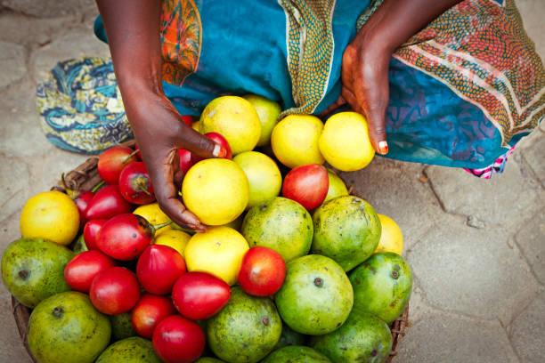 1 038 African Mango Stock Photos Pictures Royalty Free Images