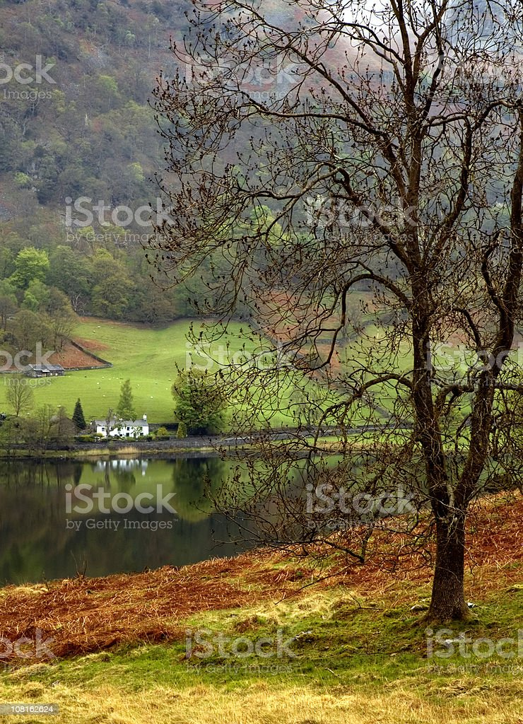 Rydal Water at Autumn royalty-free stock photo