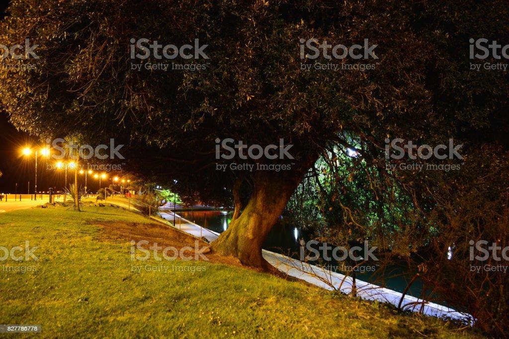 Ryde Boating Lake at Night stock photo