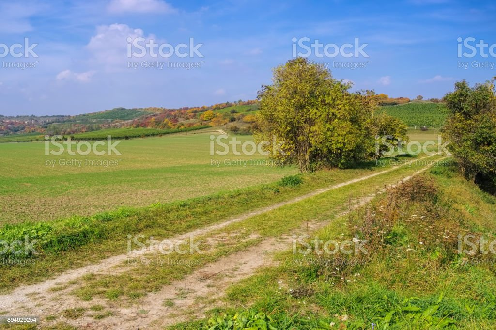 Saale Unstrut vineyards stock photo