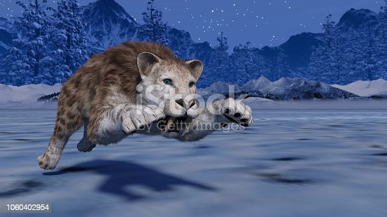 Sabertooth Tiger in the snow