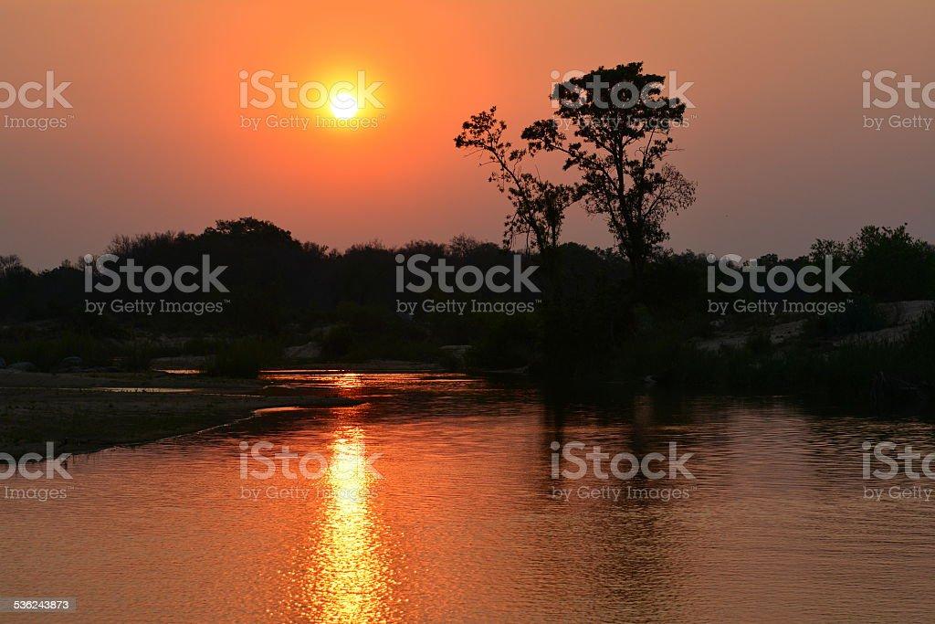 Sabi Sands Sunset stock photo