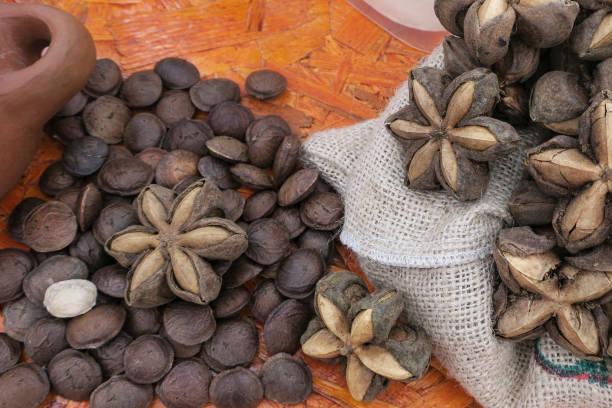 薩查伊奇水果和個人種子。(普魯凱尼婭·沃盧比利斯)圖像檔