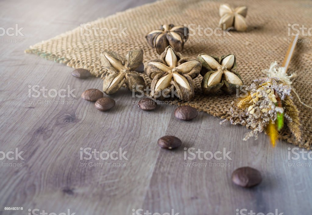 Sacha inchi peanut seed on brown wooden background. stock photo