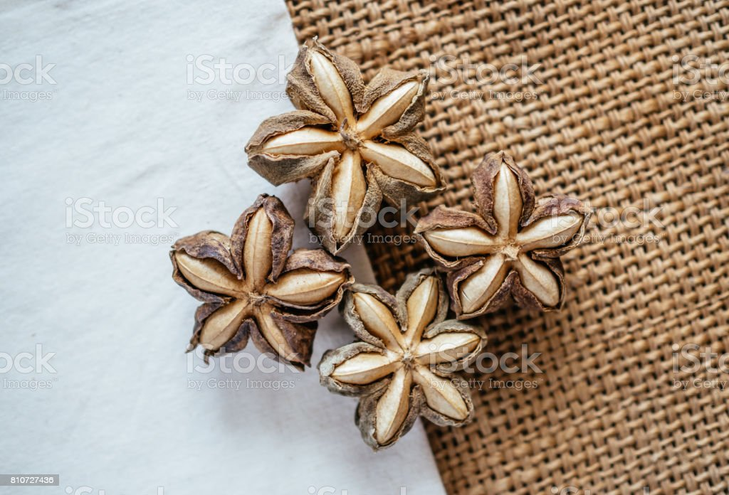 Sacha inchi peanut seed on table. To eat as medicine or processed into products. stock photo