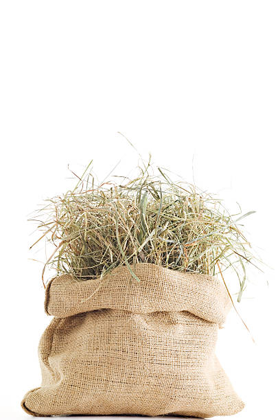 Sack of Hay stock photo