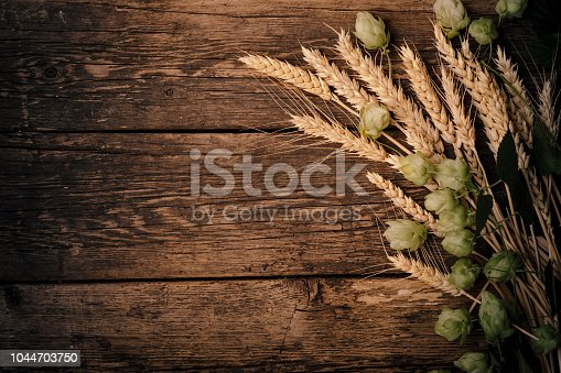 Beer brewing ingredients Hop and wheat ears on wooden cracked old table. Beer brewery concept. Hop cones and wheat closeup. Sack of hops and sheaf of wheat on vintage background.