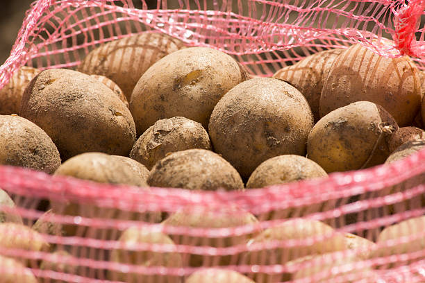 Sack of potatoes stock photo