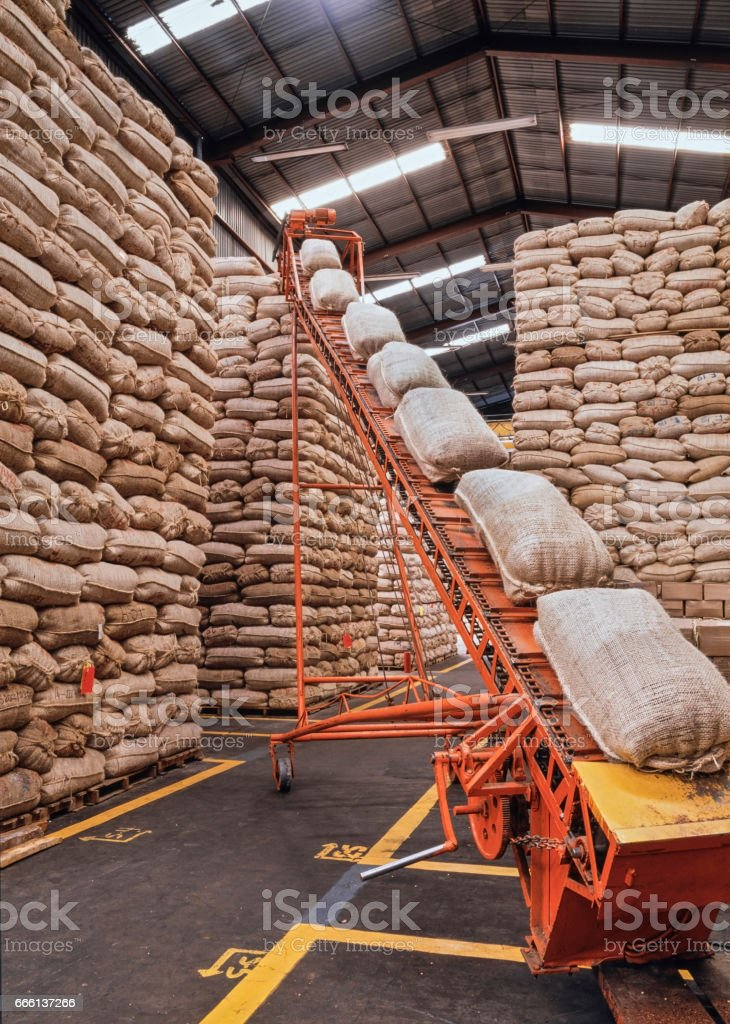 Sacks full of grains stock photo
