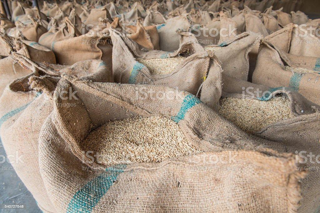Sacks of rice stock photo