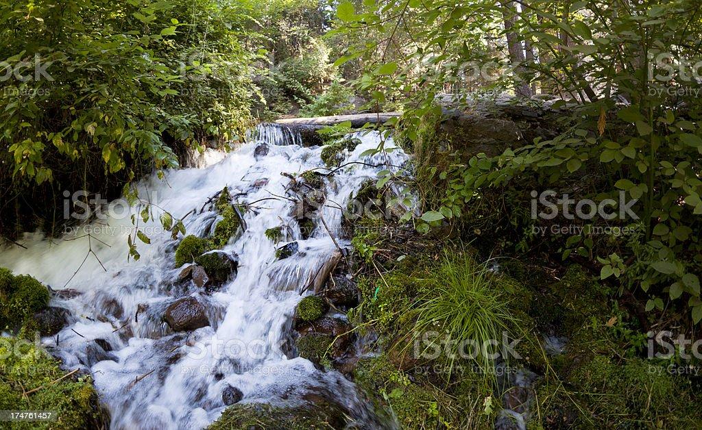 Sacramento River Waterfall stock photo