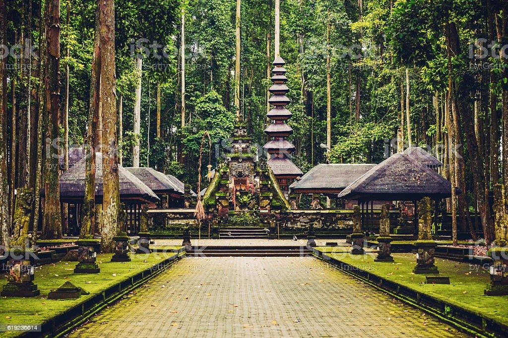 Sacred Monkey Forest Sanctuary in Ubud, Bali, Indonesia stock photo