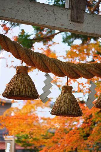 KYOTO, JAPAN - November 13, 2018: Sacred rope at the Japanese Shrine in Japan.