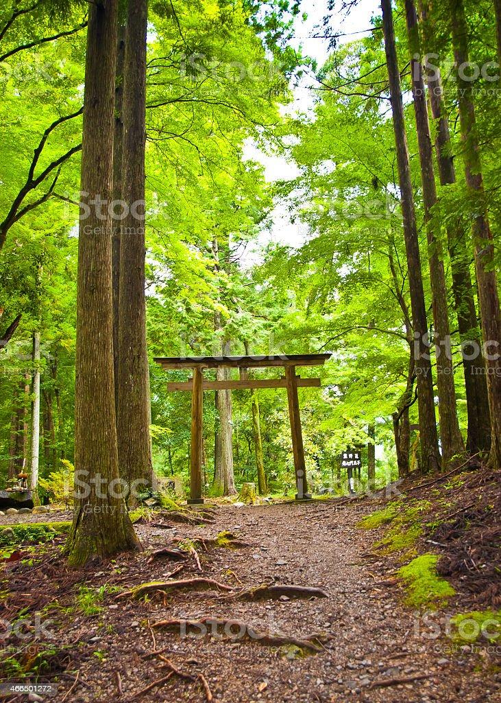 Sacred Trail - Kumano Kodo stock photo