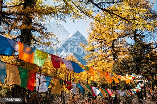 Sacred Xiannairi mountain with colorful prayer flags blowing in autumn forest at Yading