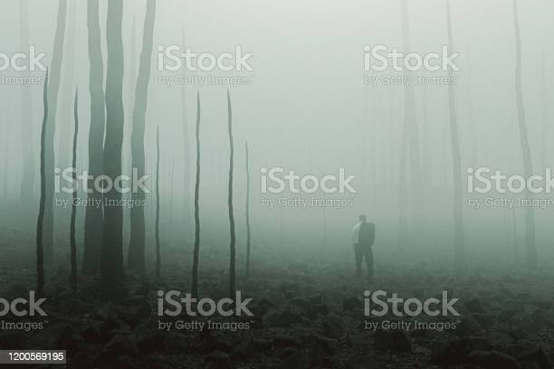 Photo of Sad businessman standing in destroyed environment