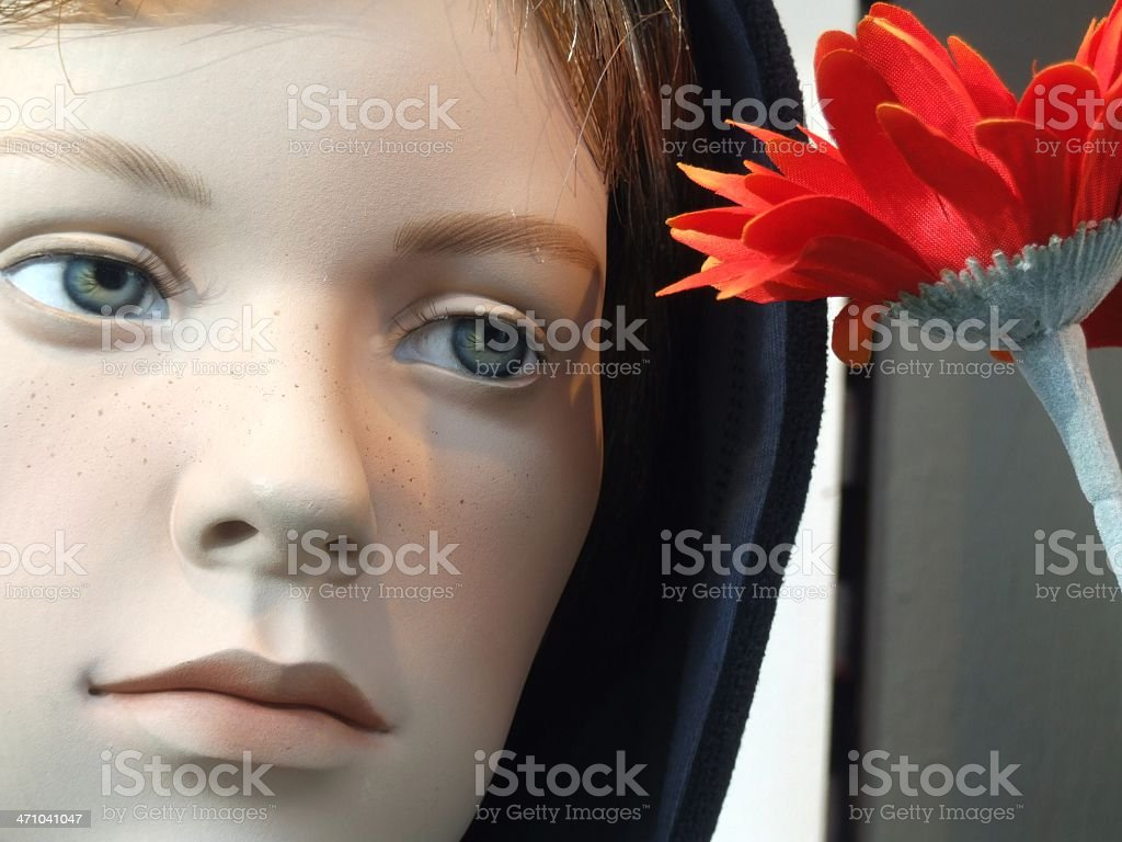 Dummy Boy Wiring Library Schematics York B1hp Sad Looking With Red Flower Royalty Free Stock Photo