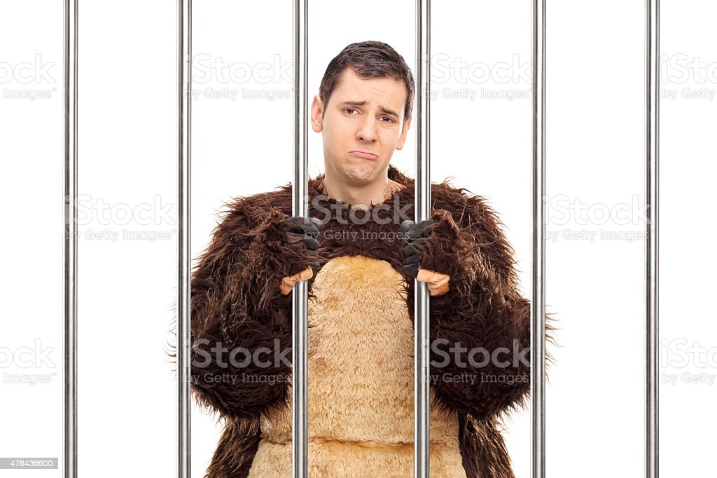 Sad man in a bear costume standing behind bars stock photo