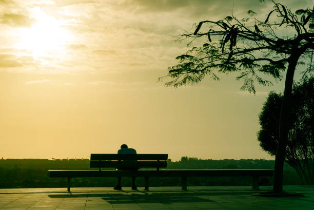 Sad man is sitting on bench, back view. stock photo