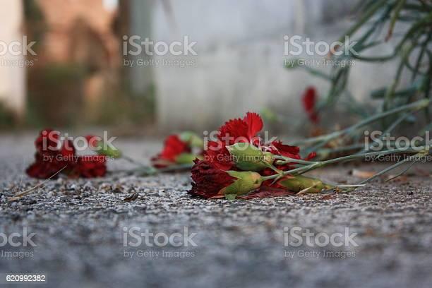 Sad rose picture id620992382?b=1&k=6&m=620992382&s=612x612&h=sinmbr2xet5lfgfwr9n13ti9eolvl00uf0qoxpdm pe=