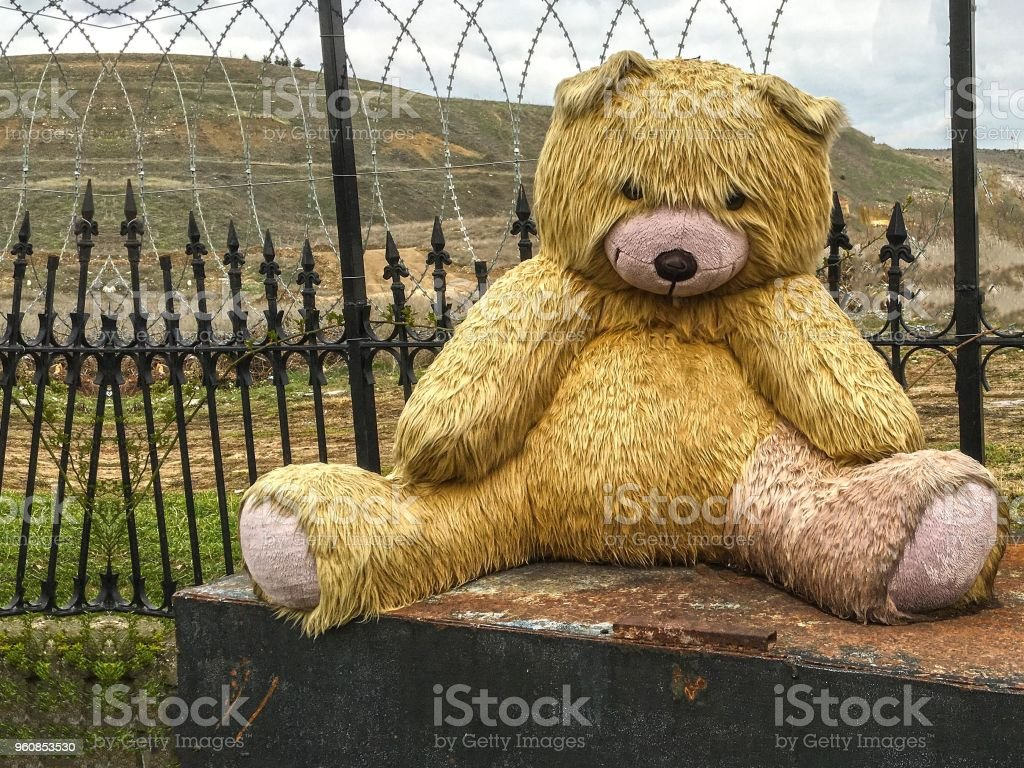 sad teddy bear background unit isolate stock photo more pictures