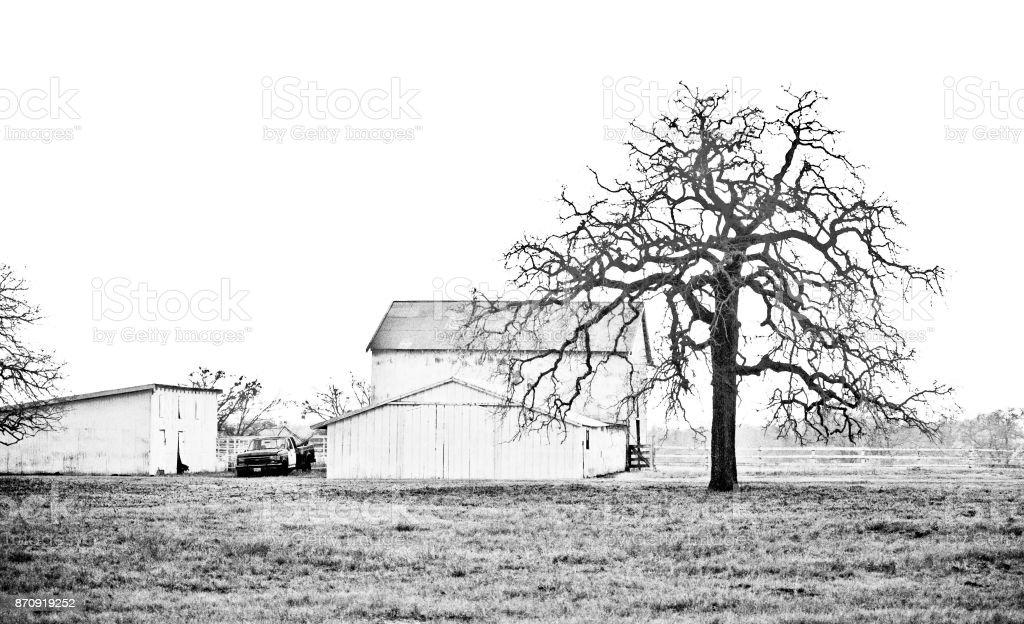 Sad Texas Farm, Black and White stock photo
