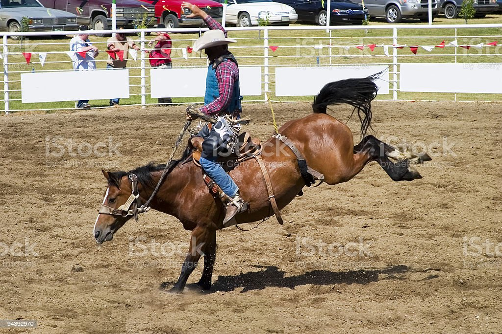 Saddle Bronc stock photo
